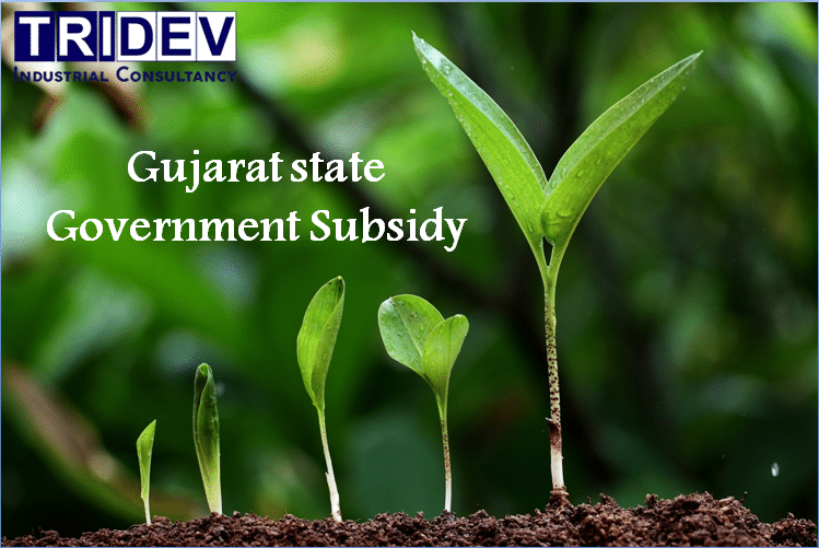 excellent or Best Subsidy Consultant in Vadodara, Gujarat state Government Subsidy,