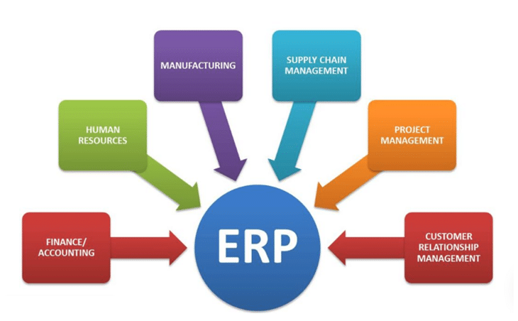 ERP, Subsidy for Pharmaceutical unit